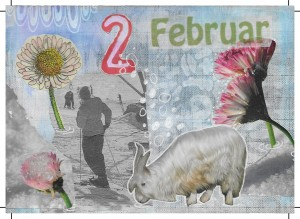 Collagen RS Februar